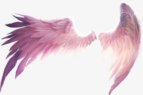el ángel de la guarda es el doble cuántico