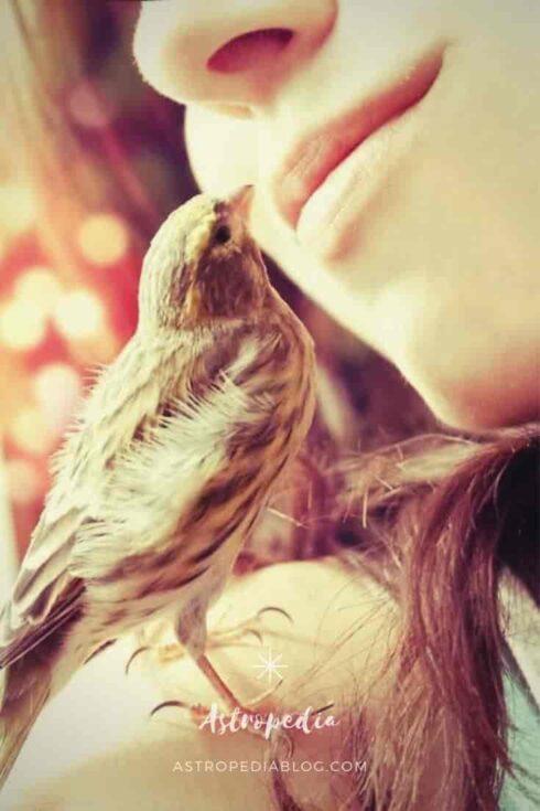 Clariaudiencia: Cómo escuchar los mensajes de tus ángeles