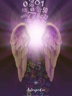 Numerología angelical del 0 al 999 (Diccionario de numerología angelical)