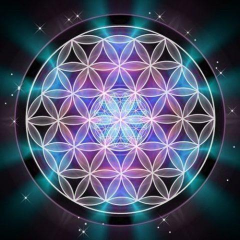 geometria sagrada flor de la vida