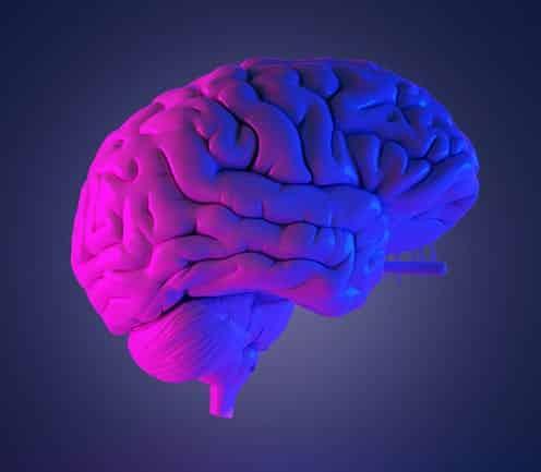programacion neurolinguistica pdf