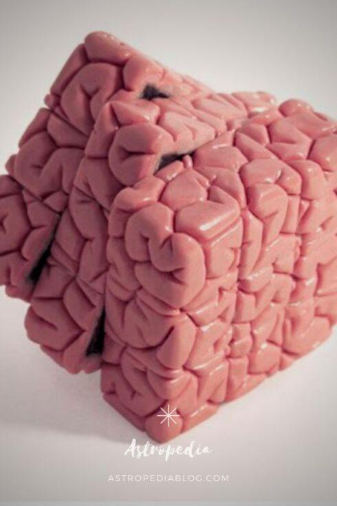 Programación Neurolingüística: éstas son las 5 razones para estudiarla (y reinventarte con ella)